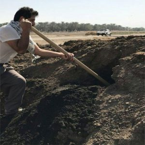 کود گاوی فرآوری شده با گوگرد معدن زرکوه